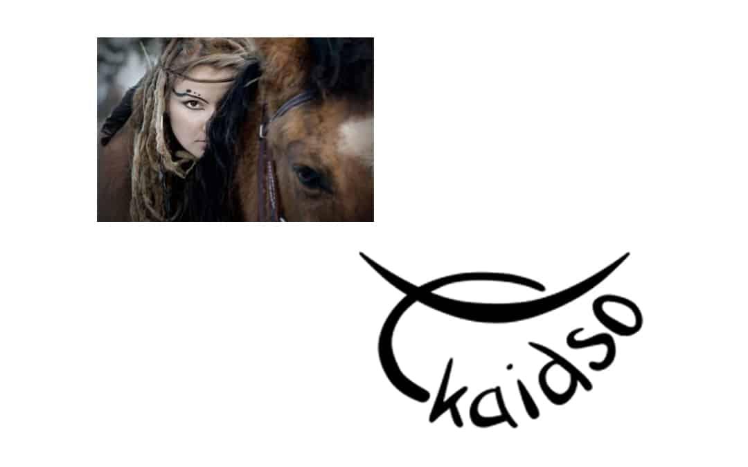 Pferde richtig verstehen Kaidso Onlinekurse